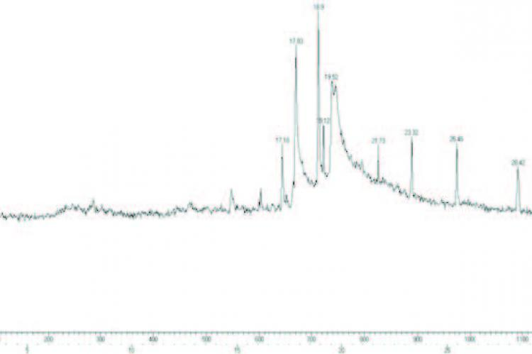 GC-MS chromatogram of ethanolic stem extract of C. anisata