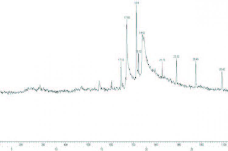 GC-MS chromatogram of ethanolic stem extract of C. anisata