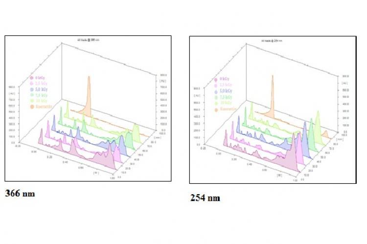 TLC dencytogram of the samples under 366 dan 254 nm.