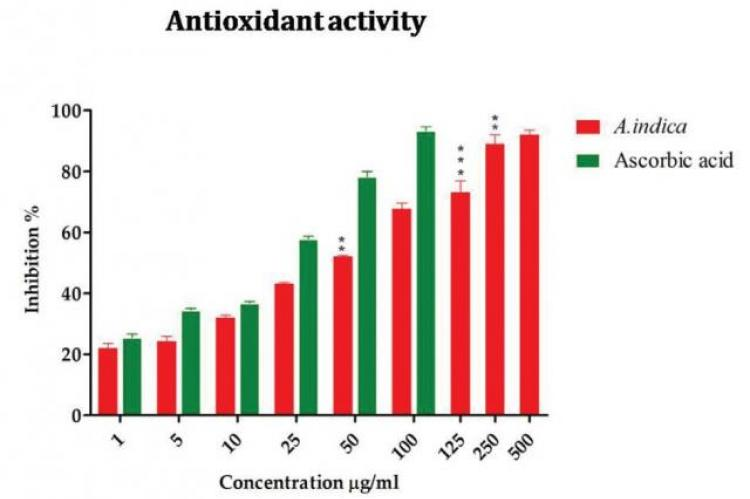 Antioxidant potential of A. bracteolata
