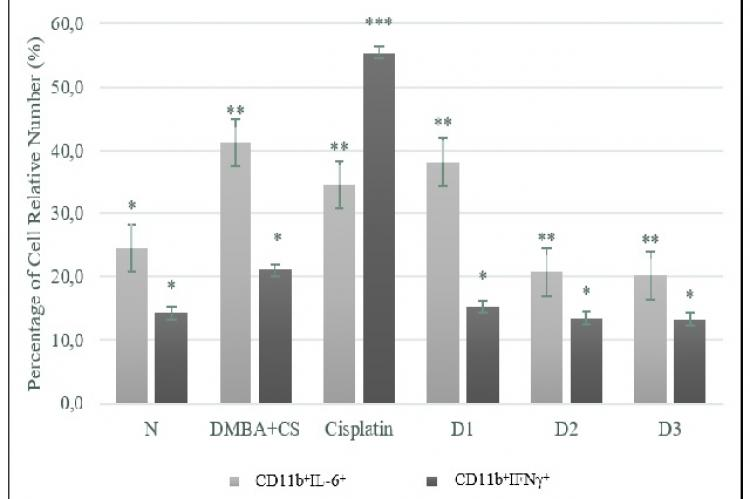 IFN-γ and IL-6 expression on CD11b cells after DMBA-CS exposure and Noni juice treatment