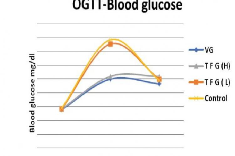 Shows effect of Vildagliptin (VG) and Trigonella foenum graecum (T F G-L) 1g/kg, (TFG-H) 2gm/kg on blood glucose levels during OGTT in albino rats