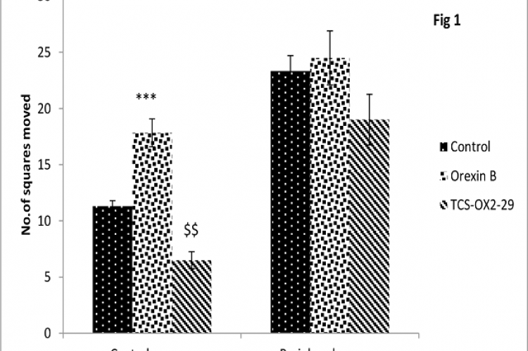 Effect of central infusion (nucleus accumbens) of orexin B and orexin B