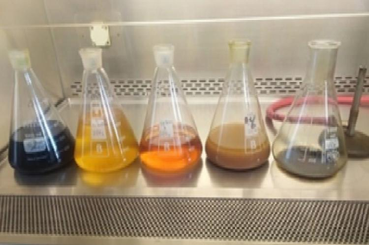 Five extracts from left to right; aqueous methanol, n-butanol, hexane, DCM and water
