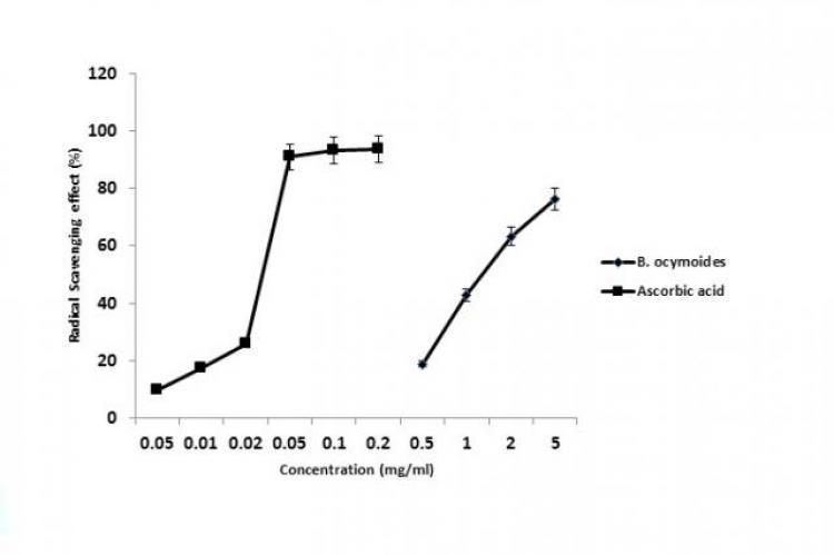 Radical Scavenging Effects of B. ocymoides and Ascorbic acid on DPPH Radical