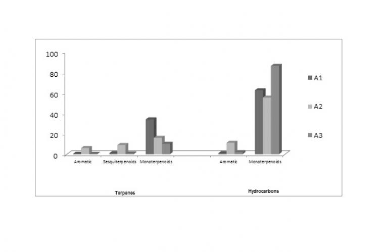 Histogram representing the relative percentages of the different classes of constituents in the essential oils (A1, A2 and A3) samples collected before flowering, and at the beginning and end of the flowering stage of A. monosperma, respectively