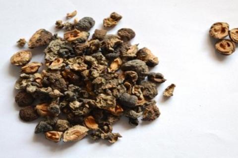 Amalaki (Emblica officinalis) fruit (dried).