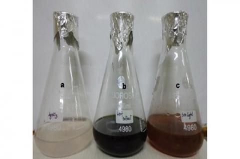 Synthesis of SNP