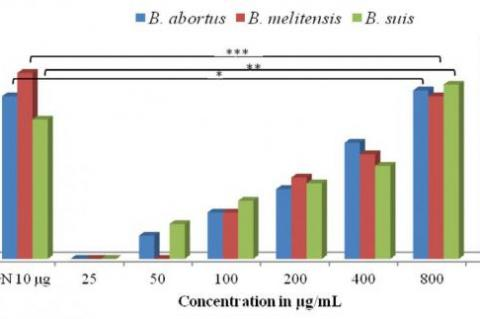 Zone of Inhibition from TLC purified ethanolic extract of C. citrinus