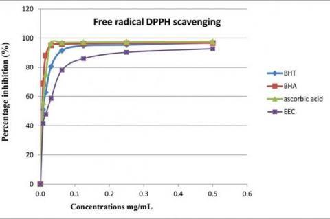 Anti-radical activity of the ethanol extract of Calendula suffruticosa