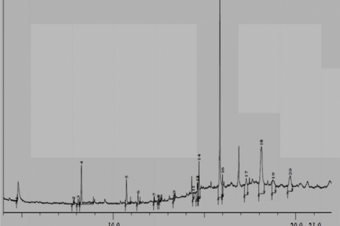GC-MS Chromatogram of the ethanol extract of Blighia sapida bark