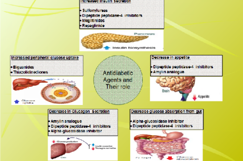 Oral antidiabetic agents and their role in treating diabetes mellitus