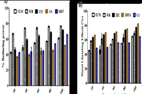 Protective reducing power (A) and metal chelating ability (B) each of the Z. mucronata (ZIZ), W. salutaris (WB), E.autumnalis (EUM)