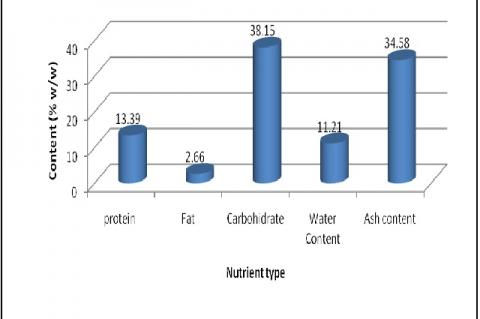 Nutrient content of P. australis found in Kelapa Lima coast, Kupang Bay