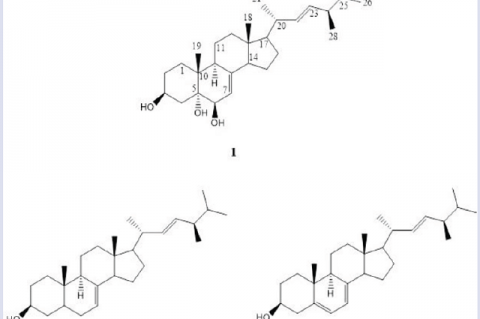 Chemical structures of cerevisterol (1), stellasterol (2) and ergosterol (3) from the dichloromethane extract of the fruiting bodies of L. tigrinus