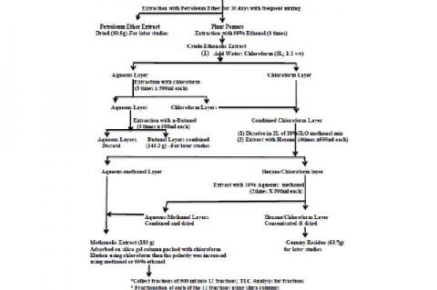 Figure 1: Isolation of Different Flavones from Artemisia monosperma (Delile)