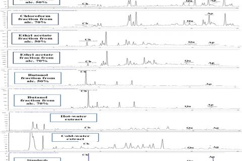 Reversed phase RP-HPLC-UV chromatograms of the fractions