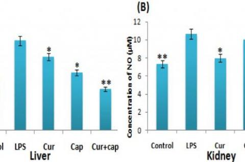 Effect of curcumin, capsaicin and their combination on NO release in the (A) Liver and (B) Kidneys of LPS-induced mice