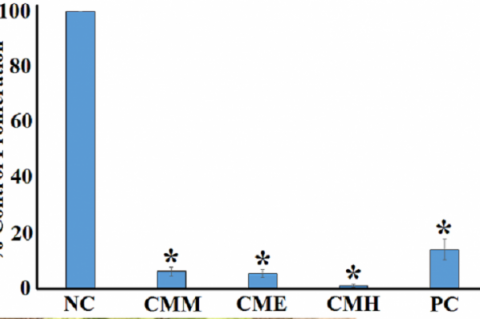 Anti-proliferative activity of the C. maritima extracts and untreated controls against Caco2