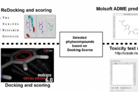 Selection of bacterial sub-cellular protein targets for docking studies