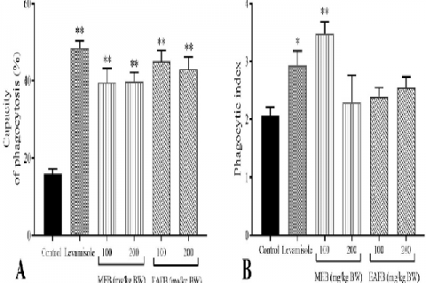 Effect of a methanolic extract (MEB) and the ethyl acetate fraction of bengkoang (EAFB) on the capacity for phagocytosis (A) and the phagocytic index (B) of peritoneal macrophages (mean ± SEM, n = 5). *P < 0.05, **P < 0.01 was significantly different compared with the control