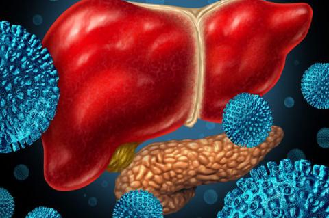 Progression of hepatitis B.